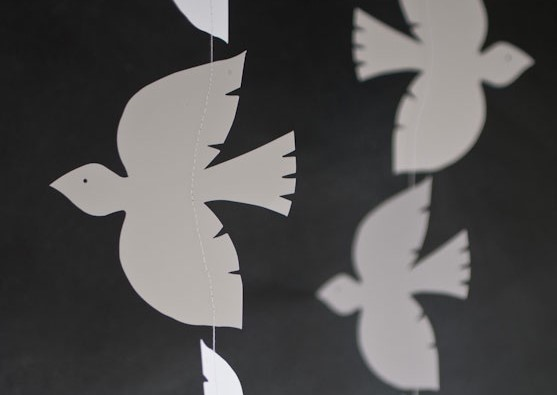 kitchener counsellors image of doves